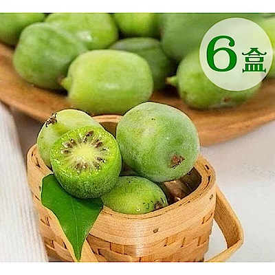 【天天果園】紐西蘭Kiwi berries寶貝奇異果2盒(每盒約125g)