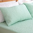 eyah宜雅 吸濕排汗大和防蹣抗菌雙效 信封式枕頭保潔墊2入(素雅綠)