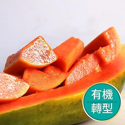 【果物配-任選699免運】木瓜.有機轉型期(700g/1~3條)