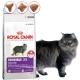 法國皇家S33-挑嘴-腸胃敏感成貓-飼料-4kg