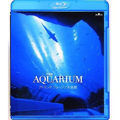 THE AQUARIUM 水族館  藍光 BD