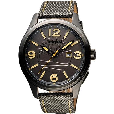 Timberland 絕地任務時尚腕錶-鐵灰x綠/45mm