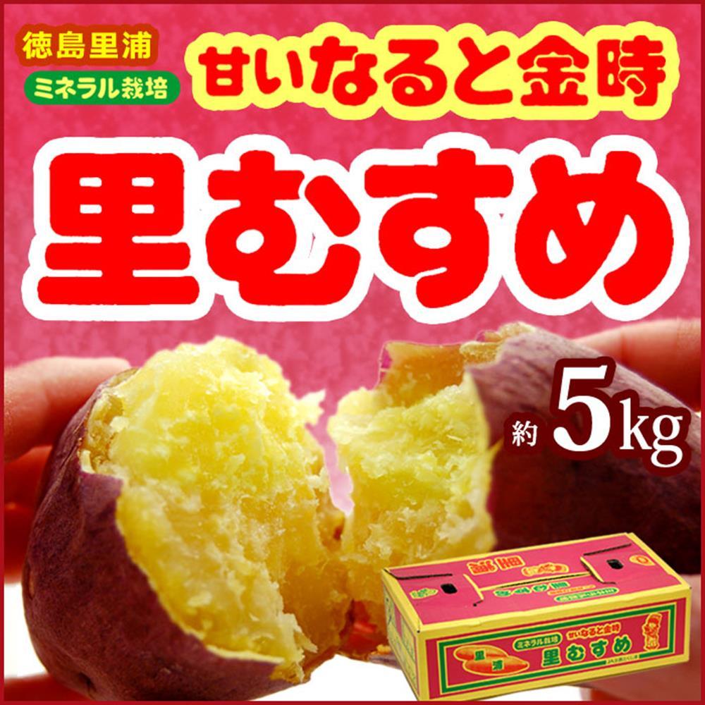 果之蔬 日本里蒲栗子地瓜 5kg±10% (日本原裝進口)