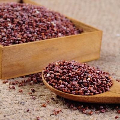 每日優果 紅藜麥(320g)
