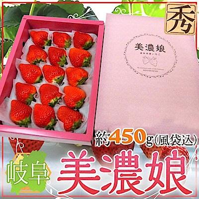 【天天果園】日本原裝美濃娘草莓500g(9-15顆)