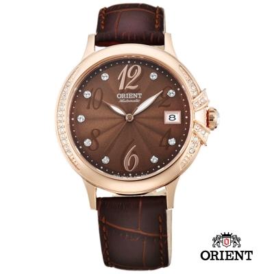 ORIENT 東方錶 ELEGANT系列 璀璨之星機械腕錶-咖啡色x玫瑰金