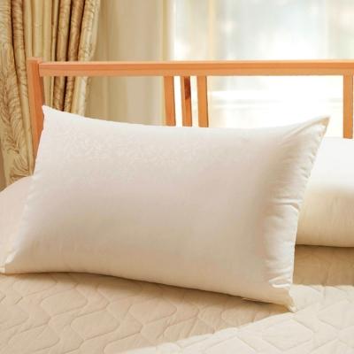 台塑生醫  物理性防蹣枕(單入)