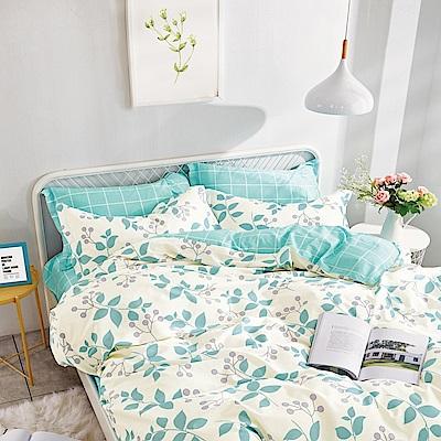 美夢元素 台製-精梳棉-兩用被床包組-綠野仙蹤  (加大)
