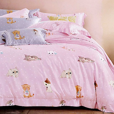 Lily Royal 天絲單人二件式床包組 貓與少年粉