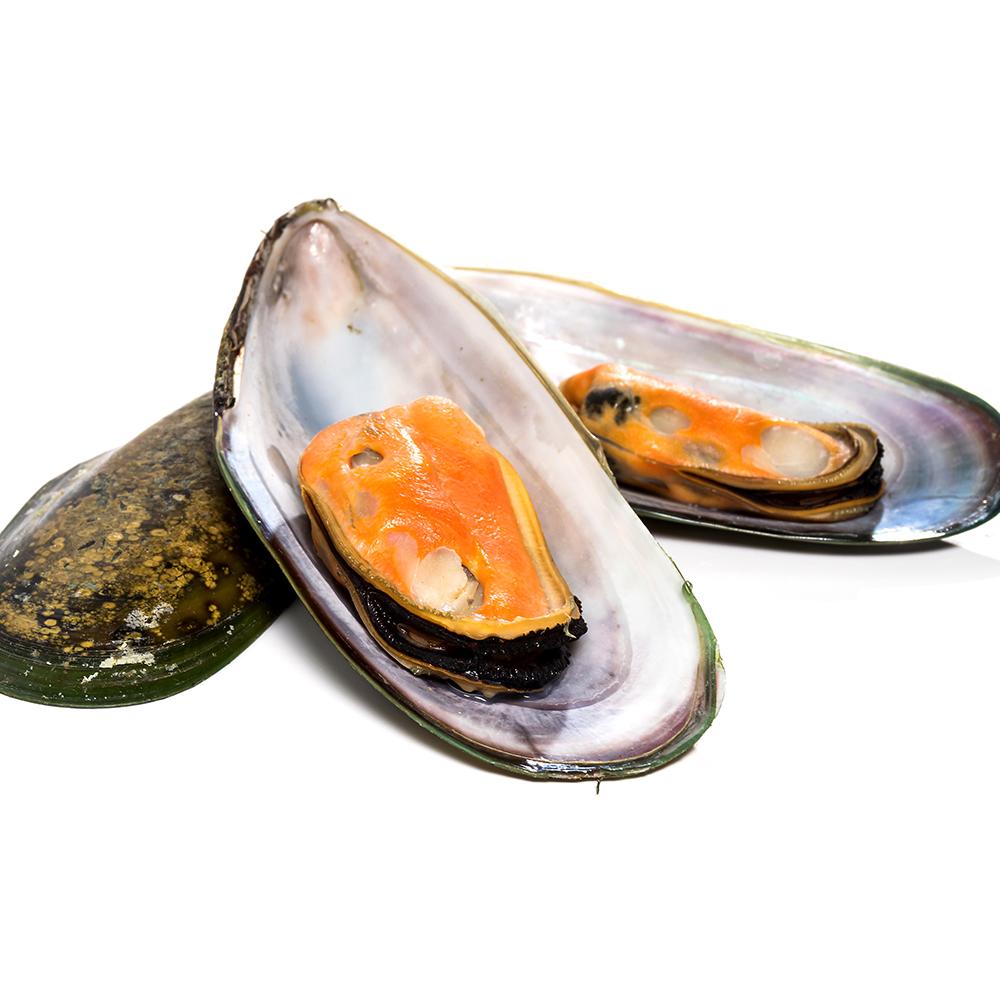寶島福利站滿額選 紐西蘭原裝進口半殼貽貝淡菜1包(400g~包)