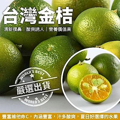 (滿799免運)【天天果園】台灣香甜黃澄金桔(600g/箱)