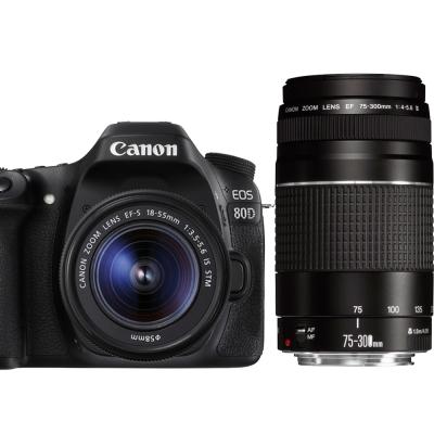 Canon EOS 80D+18-55mm+75-300mm III 雙鏡組*(平輸中文)