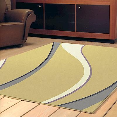 【范登伯格】艾斯-流線百搭時尚進口地毯-160x230cm