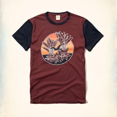 Hollister HCO 短袖 LOGO T恤 酒紅色 0015