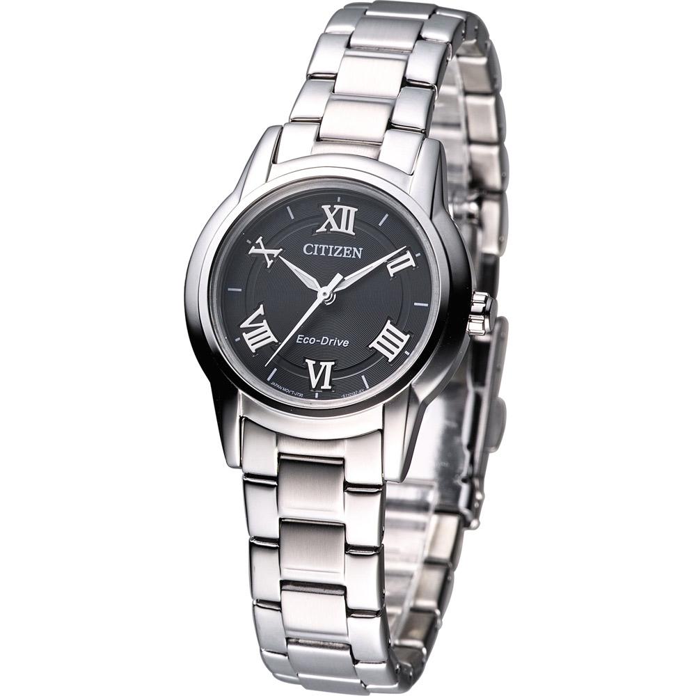 CITIZEN Eco Drive 經典光動能腕錶(FE2010-51E)-黑/30mm