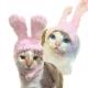 【摩達客寵物】超萌秒變兔兔耳造型寵物帽/貓咪狗狗頭套(粉紅色系)手工縫製 product thumbnail 1