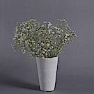 Serax 比利時 北歐杯形花器 14.5cm 點點