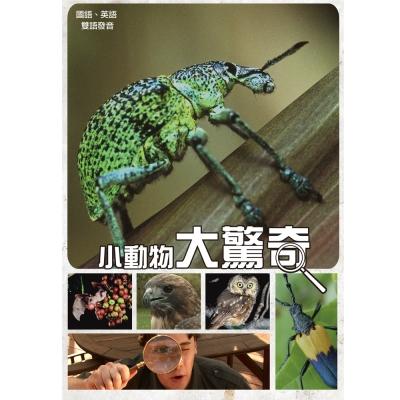 小動物大驚奇 DVD