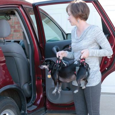 美國SOLVIT寵物介護 寵物前後肢?用輔助提拉助行帶S號 (紅色)