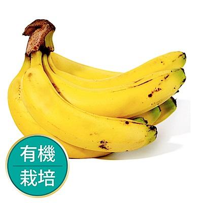 【果物配-任選599免運】香蕉.有機(750g/約3~8根)