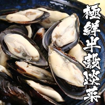 海鮮王 極鮮半殼淡菜*2盒組(800g±10%/盒)(約35顆/盒)