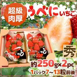 產地直送日本福岡.熊本草莓原裝
