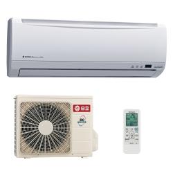 日立3-5坪標準變頻冷暖分離式
