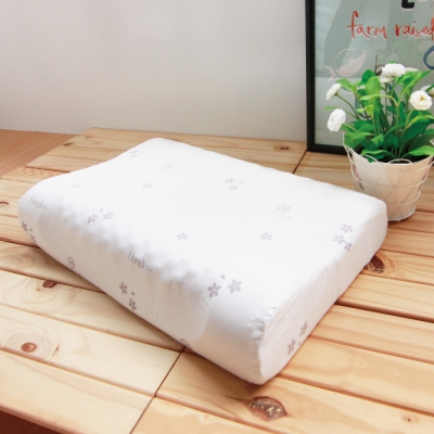 鴻宇HongYew 美國棉授權 防蹣抗菌護頸型乳膠枕2入