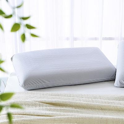 MONTAGUT-活性碳健康助眠枕(標準) / 2入