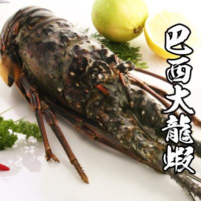 海鮮王 巴西大龍蝦*1隻組(450-500g)