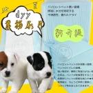 dyy業務用經濟包抗菌除臭尿布尿片共6包(再升級不滲透)