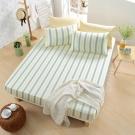 GOLDEN-TIME-清爽條紋 -200織紗精梳棉-床包三件組(雙人)