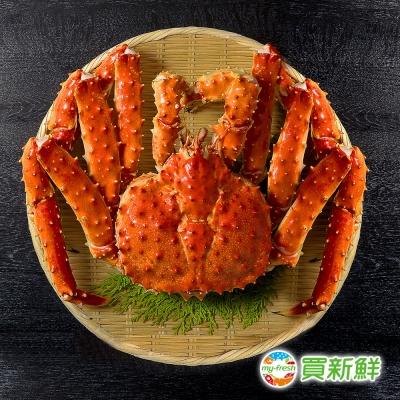 【買新鮮】智利空運頂級熟凍帝王蟹(1-1.2kg±10%(包冰率10%)/隻)(任選)