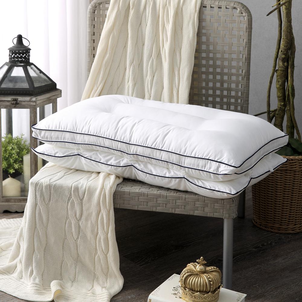 HOYA H Series 90/10可調節式兩用抗菌羽絨枕(兩入組) @ Y!購物