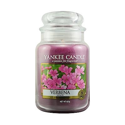 YANKEE CANDLE 香氛蠟燭-馬鞭草623g