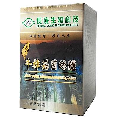 長庚生技 牛樟菇菌絲體膠囊1入(60粒/瓶)
