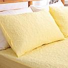 eyah宜雅 吸濕排汗大和防蹣抗菌雙效 信封式枕頭保潔墊2入(淘氣黃)