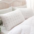 BBL 日本東麗抗菌舒眠枕(一對)