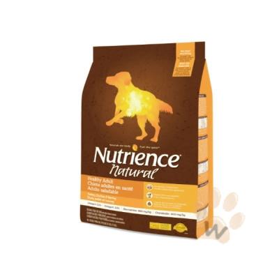 美國Nutrience紐崔斯 Natural成犬火雞肉2.5kg 1入