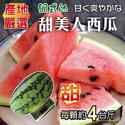 (滿799免運)【天天果園】吊網甜美人西瓜(4斤/顆)