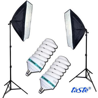 Taste恆亮光源標準色溫雙燈組(TA-300)