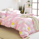 美夢元素 天鵝絨雙人加大四件式 全鋪棉兩用被床包組-棉花糖