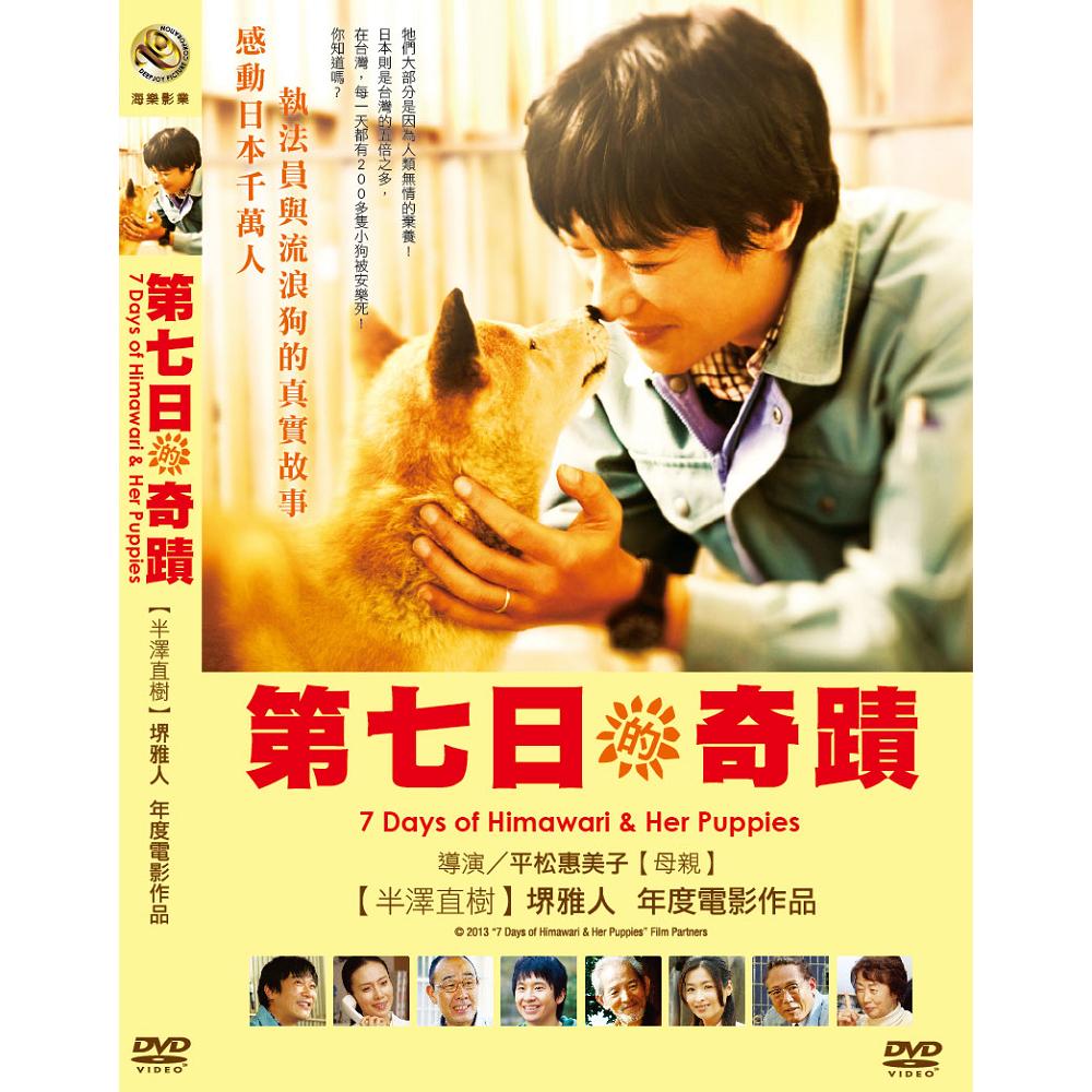 第七日的奇蹟DVD