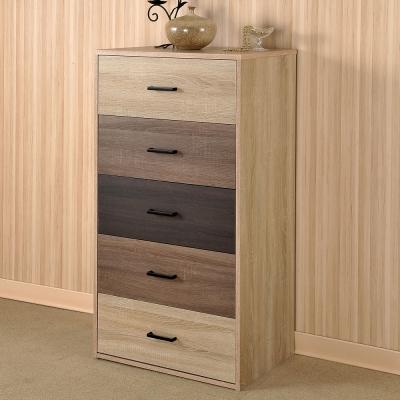 Asllie凱莉五抽櫃/收納櫃 -60x40x117 cm