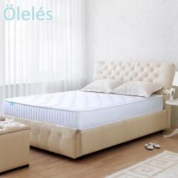 Oleles 歐萊絲 硬式480 雙人