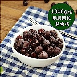【幸美生技】冷凍野生藍莓(1000g/包)