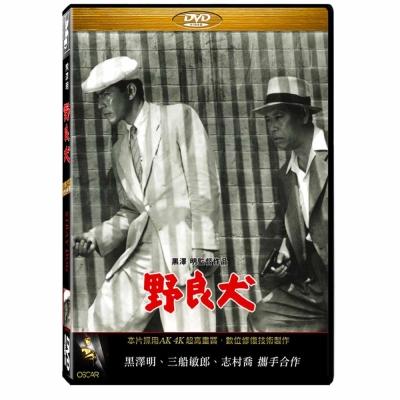 野良犬-DVD