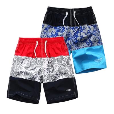美國熊 衝浪運動 扶桑花款抽繩 海灘褲 沙灘褲
