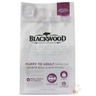 BLACKWOOD柏萊富-功能性全齡犬 腸胃保健配方(鮭魚+糙米)5磅