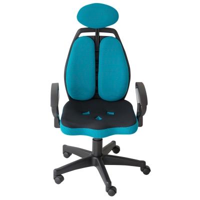 Home Feeling 雙護腰電腦椅(7色)-59x39x124-免組裝